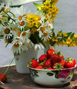 Still life with camomiles and strawberry Stock Images