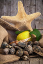 Still life with clams and starfish raw fresh lemon other shells Stock Photo
