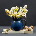 Still life composition with chestnut buds, flowers and small leaves in a blue ceramic pot and walnuts Royalty Free Stock Photo
