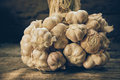 Still Life Composition With Garlic Royalty Free Stock Photo