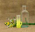 Still life with empty bottle glass and flowers on background of burlap Royalty Free Stock Photos