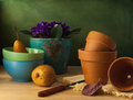 Still life with flower pots and bowls on wooden table Royalty Free Stock Image