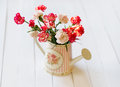 Still life with flowers in the watering pot Royalty Free Stock Photo