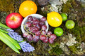 Still life of fruit on moss ground with rabbit and bird, Hyacint Royalty Free Stock Photo