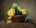 Still life with grapes in a basket on the table Royalty Free Stock Photo