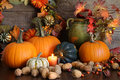 Still life harvest  decoration for Thanksgiving Royalty Free Stock Photo
