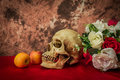 Still life with a human skull with apples and red and white rose
