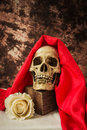 Still life with a human skull with a fake white rose