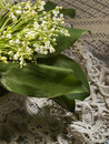 Still life with lily of the valley Royalty Free Stock Photo