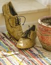 Still life with man shoes, flower pot and woven rug Royalty Free Stock Photo