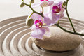Still life for natural femininity and softness zen concept around female spa environment Royalty Free Stock Photo