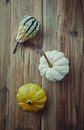 Still life with pumpkins autumn arrangement top view Stock Image