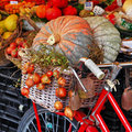 Still life with pumpkins on roman market Royalty Free Stock Image