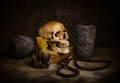 Still life with a skull Royalty Free Stock Photography