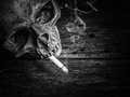 Still life skull and cigarette smoke. Royalty Free Stock Photo