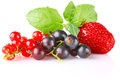 Still life of sweet berry Stock Image