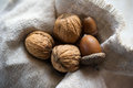 Still-life of three acorns and walnuts Royalty Free Stock Photography