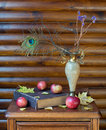 Still life with vase book and apple dried twigs peacock feather old apples autumn leaves on wooden table Royalty Free Stock Photography