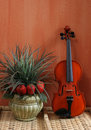 Still Life with Violin Royalty Free Stock Images