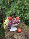Opulence of autumn fruits in an earthenware bowl Royalty Free Stock Photo