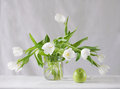 Still life white tulips Royalty Free Stock Photo