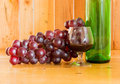 Still life wine bottle and glass red in the grapes Stock Images