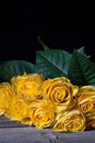 Still life yellow withered roses wooden table black background Royalty Free Stock Photography