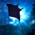 Stingray vector illustration of the Royalty Free Stock Photos