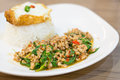 Stir Fried Minced Pork with Holy Basil and Fried egg Royalty Free Stock Photo