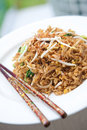 Stir fried oriental noodles with baby bok choi Royalty Free Stock Image