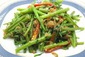 Stir Fried Water Spinach / Morning Glory with dry shrimp / seafood, thai food Royalty Free Stock Photo