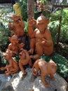 Stir thailand symptoms of monkeys waiting Stock Images