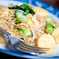 Stirfry oriental noodles with fresh vegetables Stock Photography