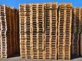 Stock of new wooden euro pallets at transportation company stocked Royalty Free Stock Photos