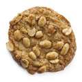 Stock Photo of One Peanut Cookie Royalty Free Stock Image