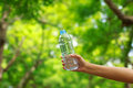 Stock photo woman hand holding water bottle against green back background Stock Photography