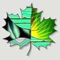 Stock single maple leaf patchwork design autumn patter pattern illustration Stock Photo