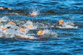 Stockholm aug the chaotic start in the mens swimming in t cold water at itu world triathlon series event Stock Images