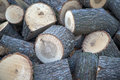 Stockpile of logs close up view at Royalty Free Stock Image