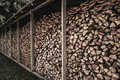 Stockpile of logs sawed under shed Royalty Free Stock Image