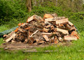 Stockpile of Wood for Winter Heat Royalty Free Stock Photo
