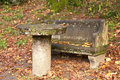 Stone bench and table old park in autumn garden Royalty Free Stock Image