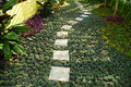 The stone block walk path in the garden with green grass background with detail Stock Photography