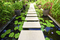 The Stone block walk path in the garden on water Royalty Free Stock Photo