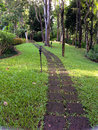 The stone block walk path in the park thailand Royalty Free Stock Photo