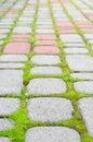 Stone blocks with moss Stock Photo