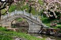 Stone bridge beautiful chinese garden Royalty Free Stock Photo