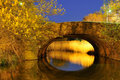 Stone Bridge at Night Stock Image
