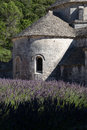 Stone chancel of abbey of senanque with lavender provence france Royalty Free Stock Photo
