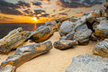 Stone desert on  coast  lake on  sunset  background . Royalty Free Stock Photo